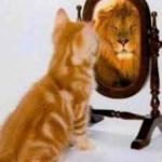 Tro på dig selv